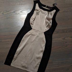NWT Classy Limited Sheath Dress!